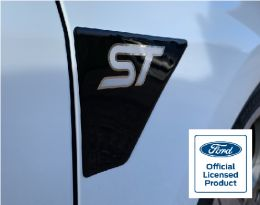 Fiesta Mk8 ST Wing GEL Badges - Gallery Image